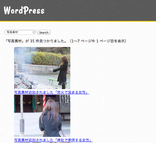flexiblesearch-wordpress-05